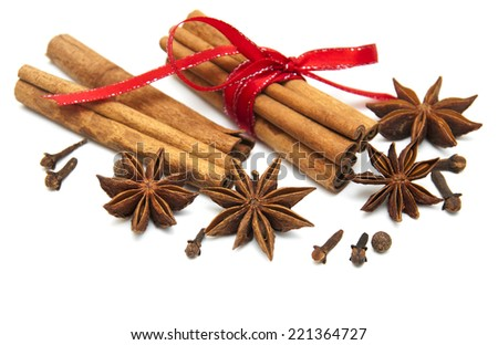 Star anise,  cinnamon stick and cloves on a white  background