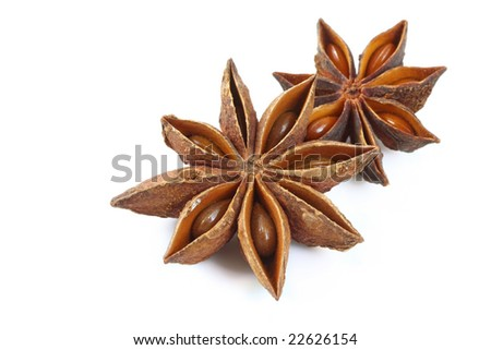 Star anise on a white background, casting soft shadow.