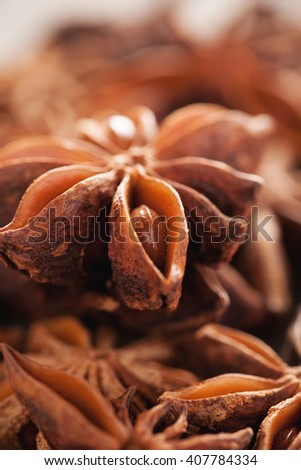 Star anise seed closeup macro shot, selective focus, vertical - stock photo