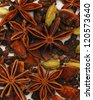 star anise with cinnamon sticks isolated on white - stock photo