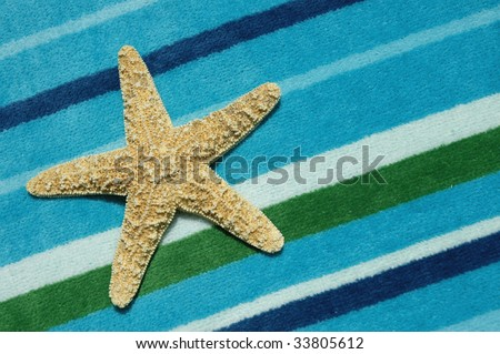 Star Fish / Sea Star on on beach towel
