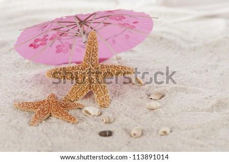 Star fish under umbrella on the beach - stock photo