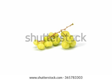 Star gooseberry ancient fruit on white background