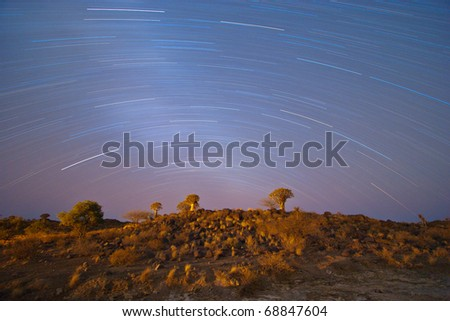 Star Trail, Quiver Tree Forest, Namibia - stock photo