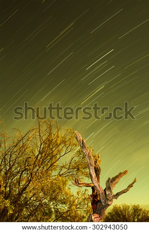 Star trails shot in the desert during a moon lit night casts a beautiful green hue. - stock photo