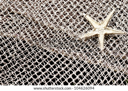 Starfish and fishnet background - stock photo