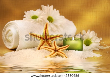 Starfish and green candle near water reflection - stock photo