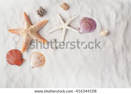 Starfish and seashell on the beach. Summer holiday relaxing seaside. - stock photo