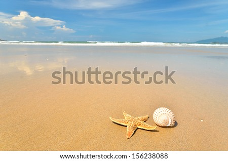 Starfish and seashell on the sandy beach - stock photo