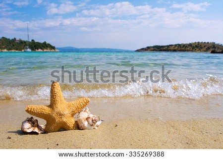 Starfish and shells on a beach with waves in a background - stock photo
