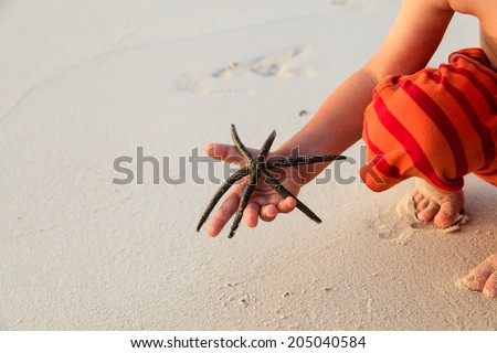 starfish in child hands on the beach - stock photo