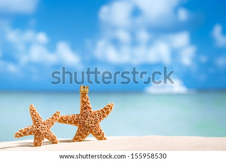 starfish in crown with ocean, beach,white boat  and seascape, shallow dof - stock photo