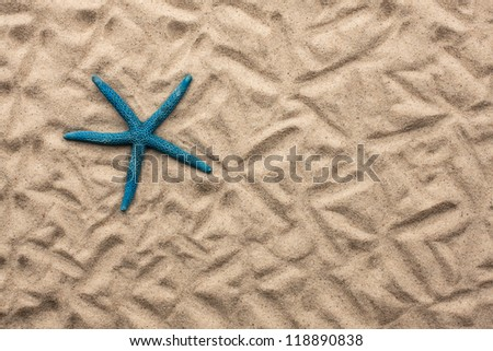 starfish lying on the sand,can be used as background - stock photo