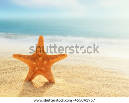 Starfish on a summer beach  on a background of ocean