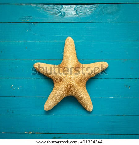 starfish on blue wooden boards