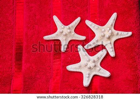 starfish on red towel - stock photo