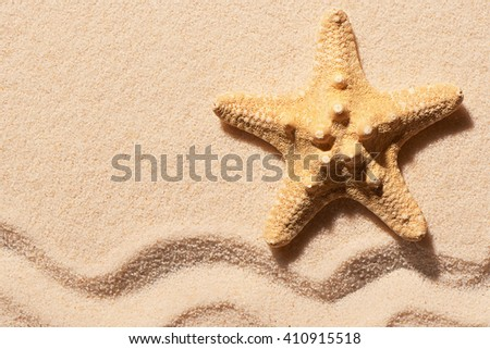 Starfish on sand with mark of wave. Summer beach background. View from above - stock photo