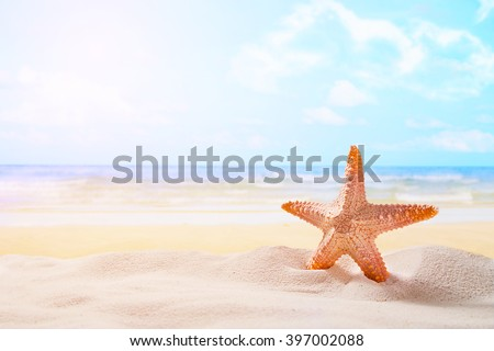 Starfish on sandy beach - stock photo