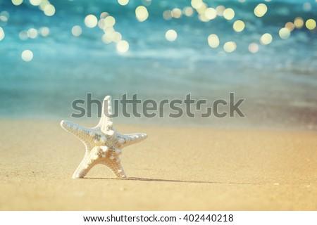 Starfish on sandy beach - stock photo