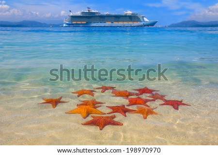 starfish on the beach and cruise ship in the caribbean - stock photo