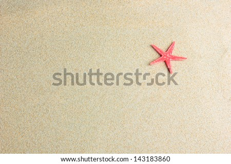 Starfish on the sand on the beach - stock photo