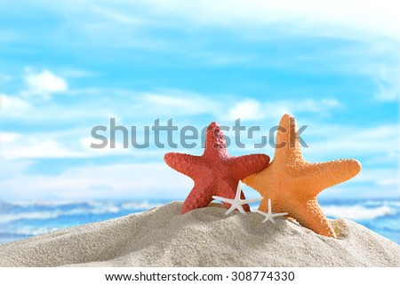 Starfish on the sandy beach in summer with blue sea and sky travel icon