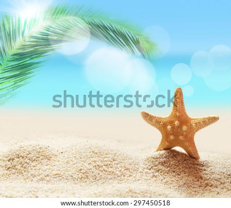 Starfish on the tropical summer beach background - stock photo