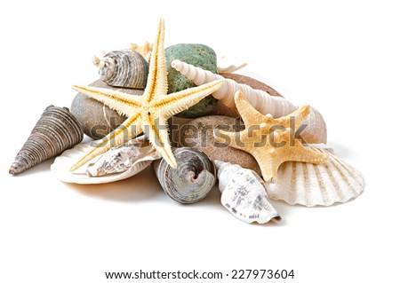starfish, seashells and stones  isolated on white background - stock photo