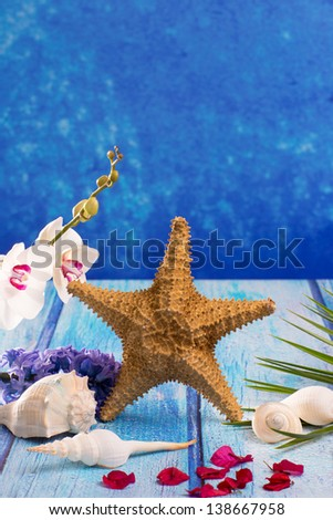 starfish seashells with hyacinth flower and white orchid on blue wood  background - stock photo