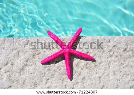 Starfish sitting by swimming pool. Room for your text, perfect for cover art. - stock photo