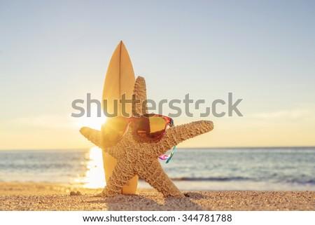 Starfish wearing sunglasses  on the beach  - stock photo