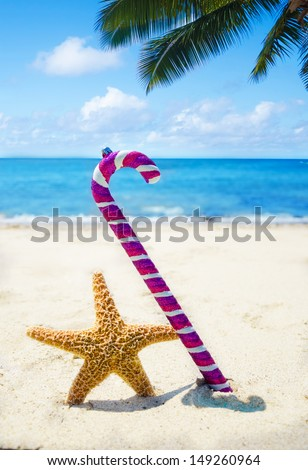 Starfish with Christmas decoration on sandy beach in sunny day- holiday concept - stock photo