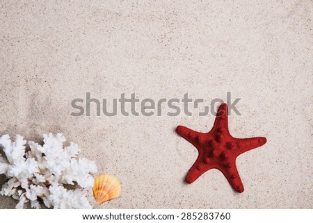 Starfish with coral on the Beach sand.