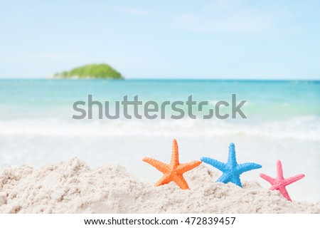 Starfish with sea shell - Best for Web Use