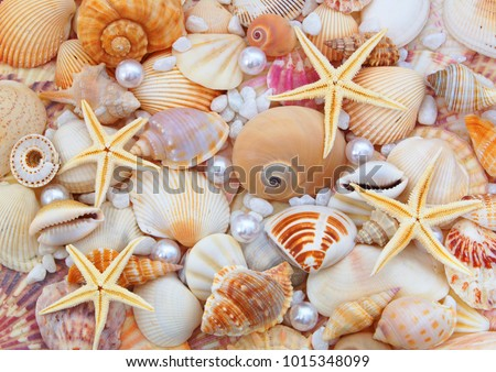 stock-photo-starfishes-pearls-and-amazin