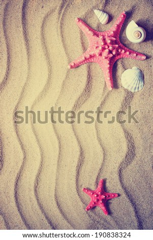 Starfishes with sea shells against the beach sand background/summer beach holidays background - stock photo
