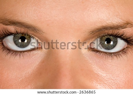 Staring Eyes - stock photo