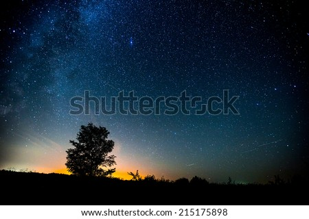 Starry sky and summer meadow with tree. High level of noise - stock photo