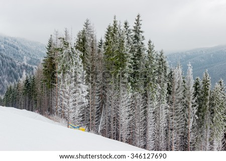 Start of a ski marked piste among the spruce forest in cloudy weather  - stock photo