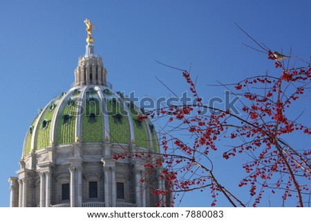 State Capitol in Harrisburg, PA.  Red berries with bird perched.