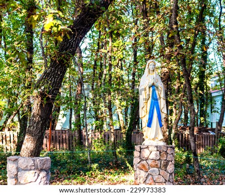 Statue Of The Blessed Virgin Mary Among Ivy Covered Trees. Green Weeds And  Grey Rocks