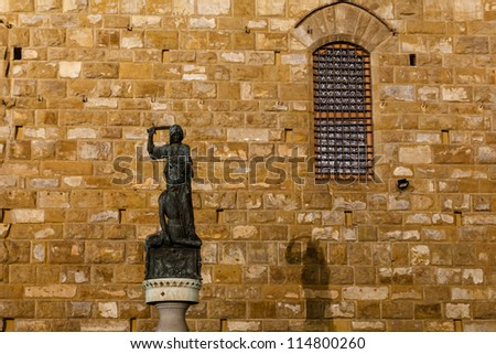 Statue with Sword and its Shadow in the Night, Piazza della Signoria, Florence, Italy