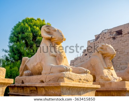 Statues in front of The Temple of Karnak in Egypt