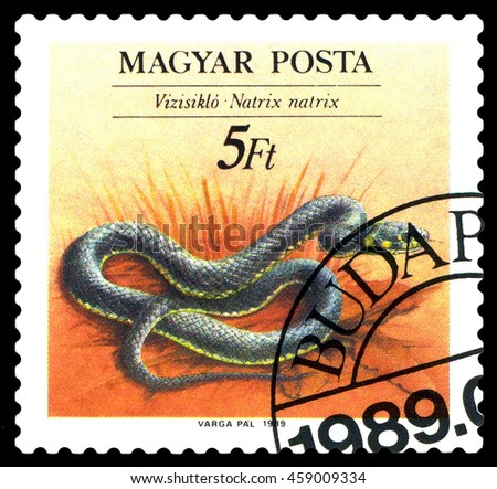 STAVROPOL, RUSSIA - JULY 25, 2016: a stamp printed by Hungary,  shows  Natrix natrix,   Snakes, , circa 1989    - stock photo