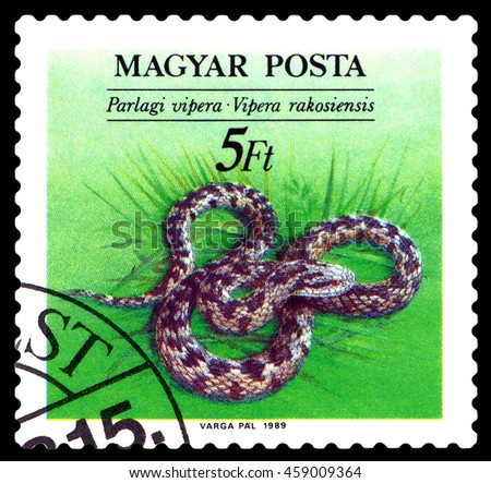 STAVROPOL, RUSSIA - JULY 25, 2016: a stamp printed by Hungary,  shows  Vipera Rakosiensis (Orsini's viper),   Snakes, , circa 1989    - stock photo