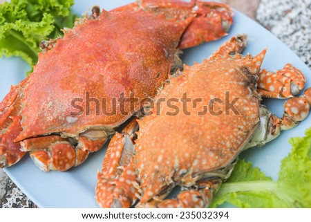 Steam crabs - stock photo