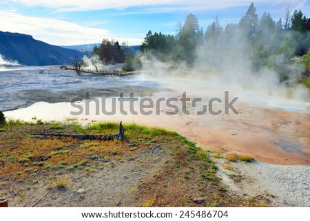 steam in Mammoth Hot Springs area of Yellowstone National Park, Wyoming - stock photo