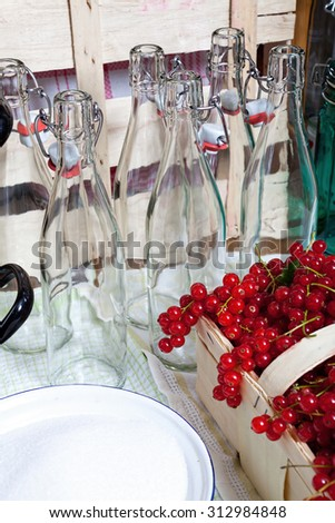 Steam juicer, kitchen utensils and ingredients for manufacturing of currant syrup