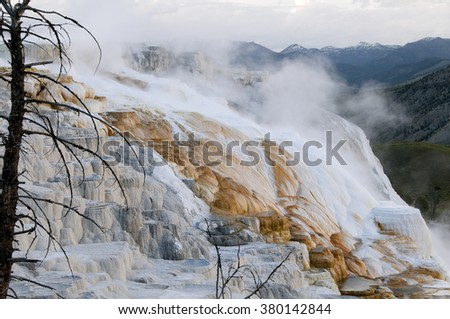 Steam rises from a colorfully flowing, yet terraced hot spring in Yellowstone National Park. - stock photo