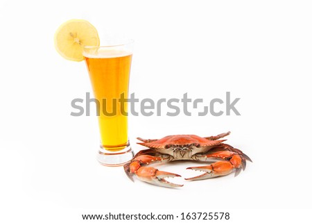 Steamed Blue Crab, one of the symbols of Maryland State and Ocean City, MD, with glass of beer on white background - stock photo